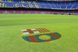 Logo print on the field. , Chan KW & SM San - July 2011
