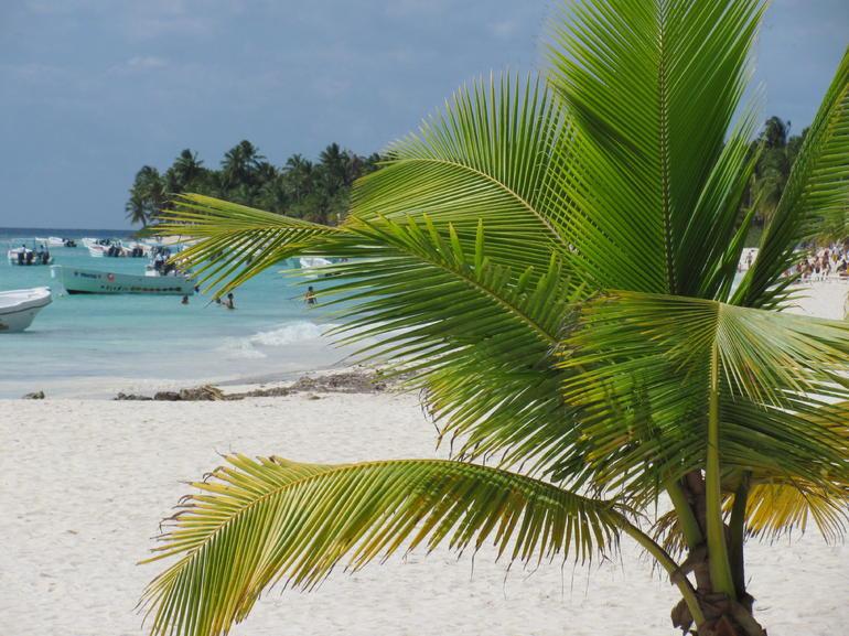 Saona Island - Punta Cana