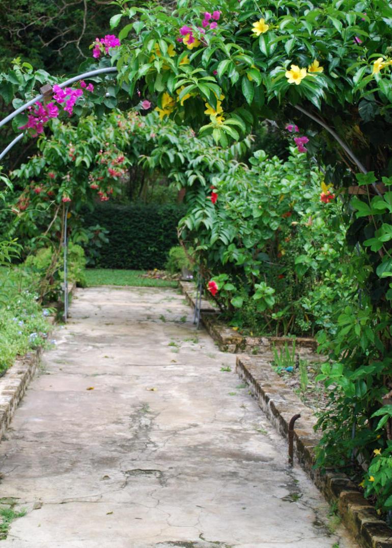 St. Nicholas Abbey - Barbados