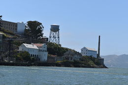 Alcatraz was very interesting, loved it......Muir Woods were very zen and the overwhelming feeling of serenity was one I will never forget. , Amanda P - June 2016