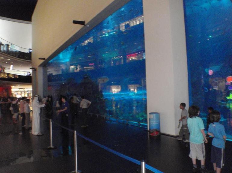 Aquarium - Dubai