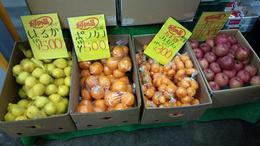 Fruit at Hakone Robeway Station , Lim Pei Pei 佩 - February 2013