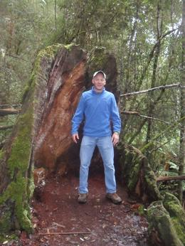 Blane is his name, all the way from Texas,stood in wonderment at the size of this tree., Judith W - August 2010