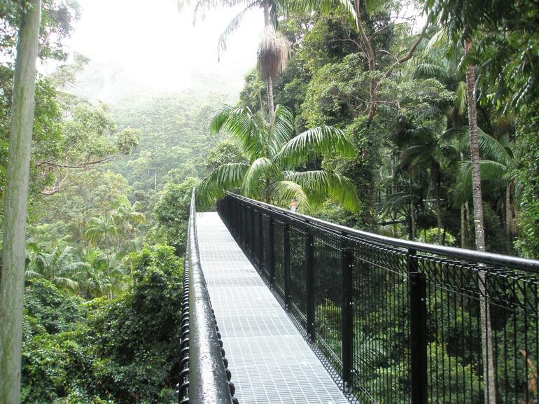 Sky Walk - Gold Coast