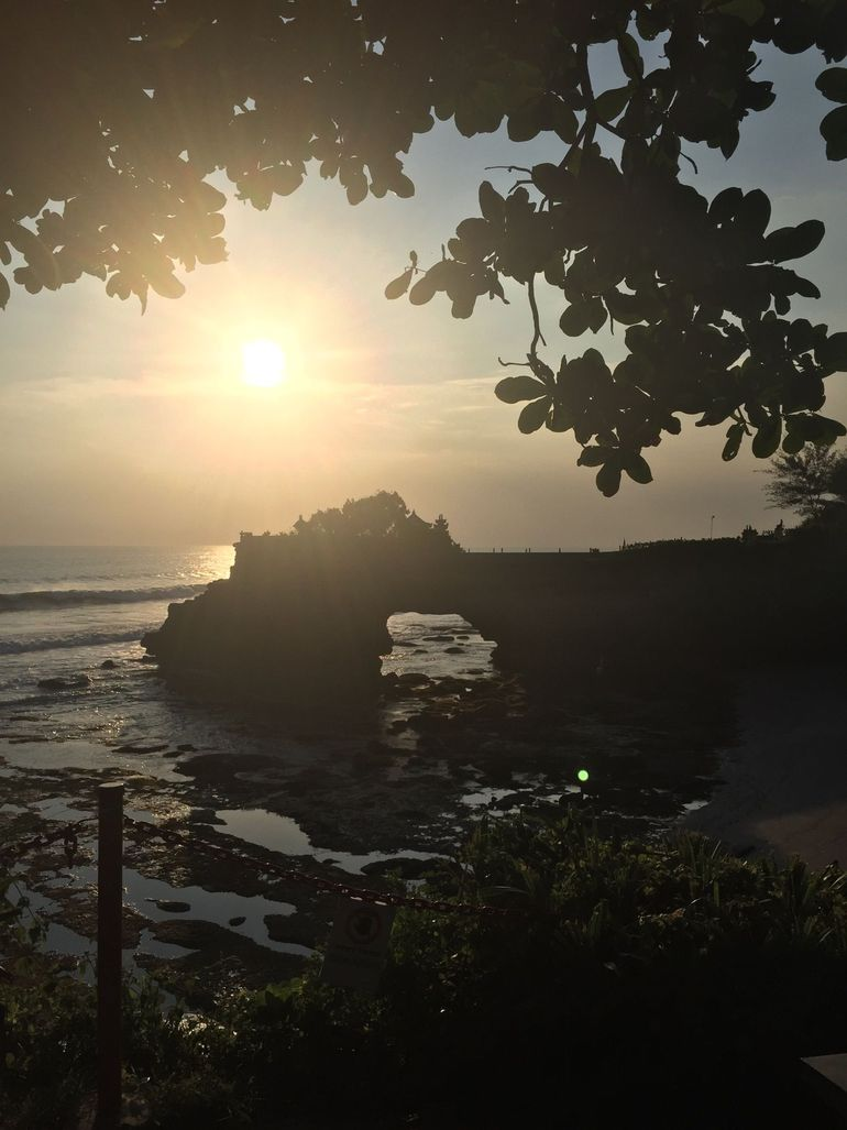Bali Monkey Forest, Mengwi Temple, and Tanah Lot Afternoon Tour photo 17