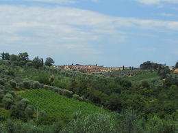 Just one of the many lush, beautiful views on the Tuscany Bike Tour , Sharise C - July 2013