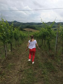 The vineyard was great, we got a lovely brief tour and the meal and wine were great! , Anais B - June 2016