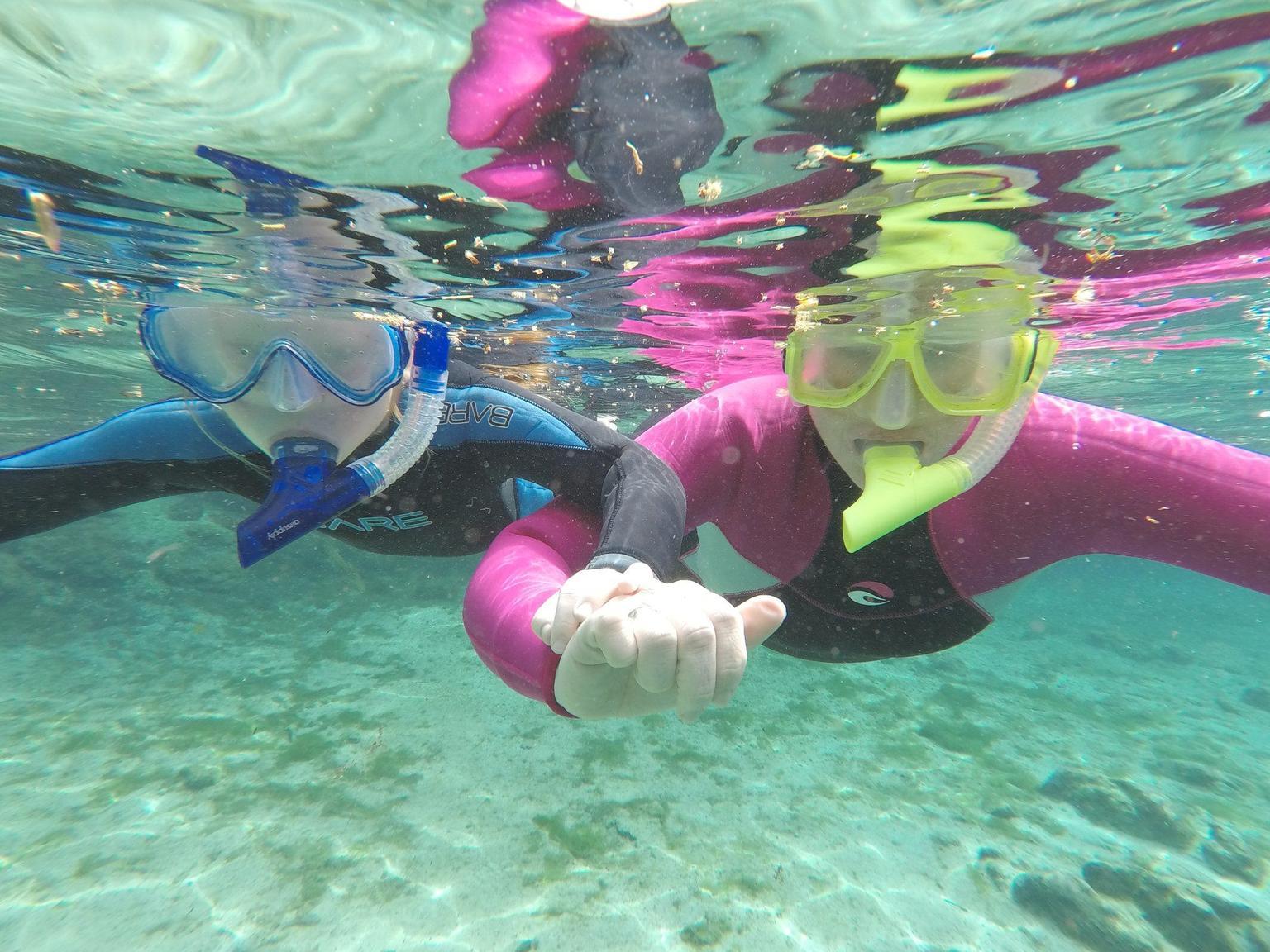 MAIS FOTOS, Swim with Manatees Adventure