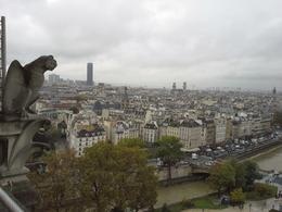View from Notre Dame Tower , Bozhena B - November 2013