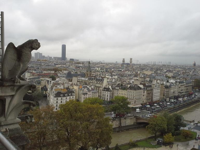 View from Notre Dame Tower - Paris
