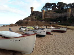 Beach with Castle in the back ground , Diana T - December 2016