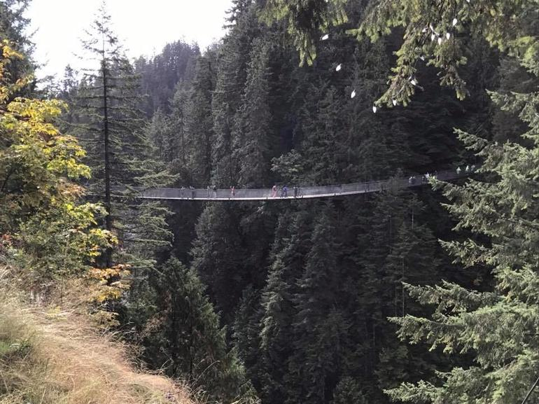 Skip the Line:Capilano Suspension Bridge Park Ticket w/Shuttle from Vancouver photo 20