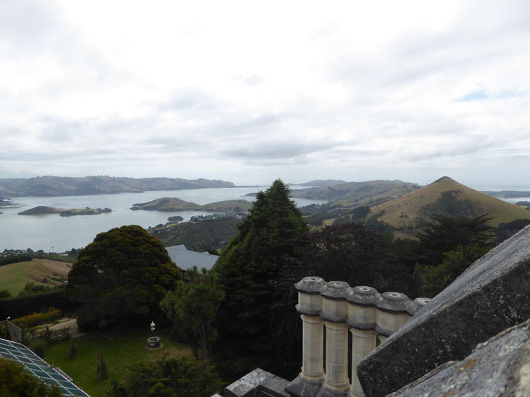 Full-Day Dunedin Tour with Larnach Castle & Gardens, Speight's Brewery