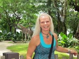 Lovely giraffe enclosure overlooking Upper Seletar Resevoir , Yasmine D - March 2013