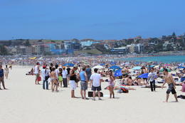 Bondi Beach , Frank H - January 2013