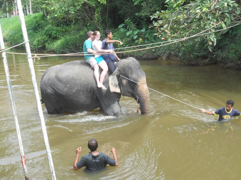 Honeymooners riding into the river (preparing to bathe an elephant) -