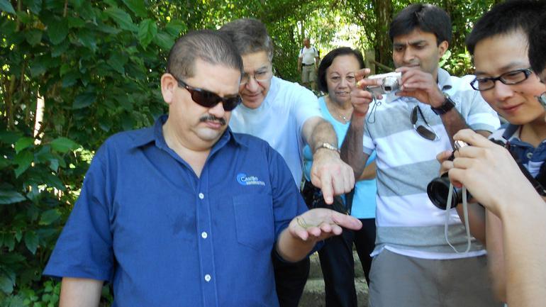 12-13-11-40 El Yunque rainforest Puerto Rico - San Juan