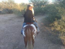 Horseback trail rides - October 2009