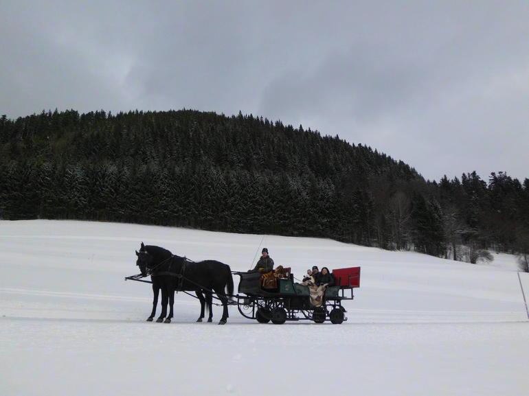 Sliegh ride in winter wonderland!! - Salzburg