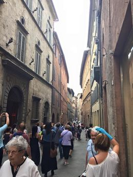 Our first view of the narrow streets of Siena, first stop on the tour , Whitney H - June 2015