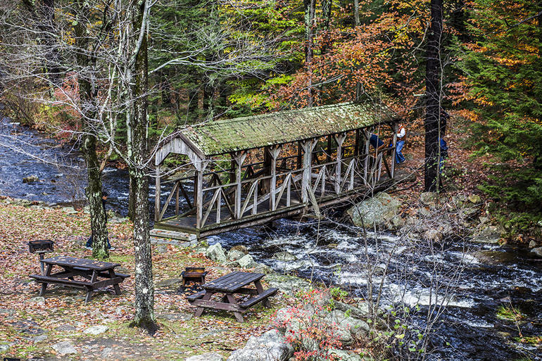 Autumn in New England: Fall Foliage Sightseeing Day-Trip with Lunch from Boston photo 35