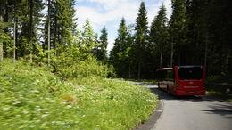 En estos autobuses se sube desde el centro de visitantes. solo se puede subir en estos. , Maria R P - June 2016
