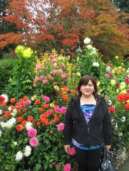 Rose Garden , Caroline F - October 2015