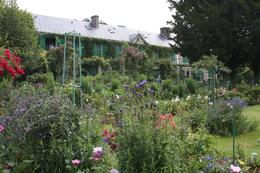 We were standing in the garden at Monet's house when I took this picture., Michael L - July 2009