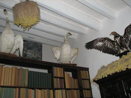 Wonderful collection of original books and wierd Dali adornments at yhe Dali House. Would have loved to be a guest. , NANCY F - November 2012