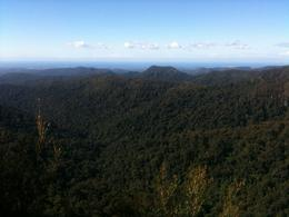 Looking across Springbrook toward Gold Coast, Susie H - May 2010