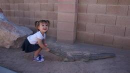 My niece tackling the Croc's!, Cutie Repolinos - October 2014