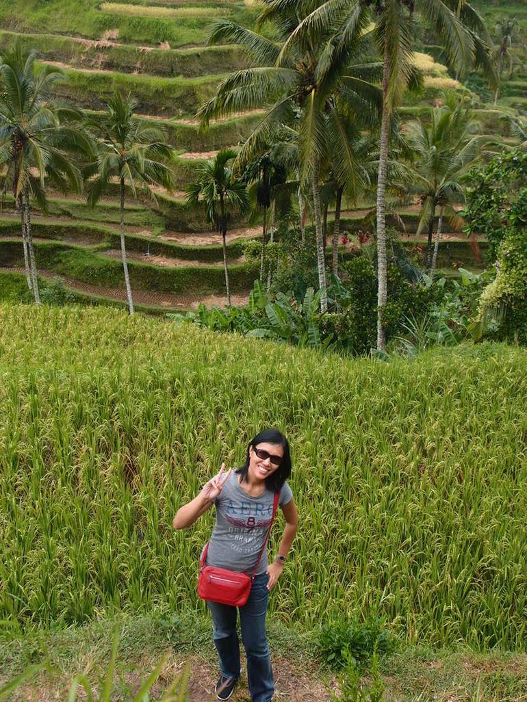 Paddy terrace - Tegalalang - Bali