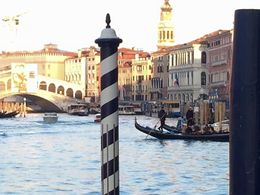 The tour guide took us out to a pier, where we had a great view of the Rialto Bridge. , kmaria1202 - January 2016
