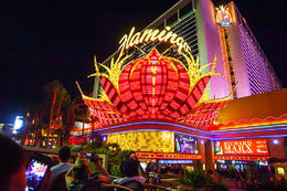 The Flamingo Casino seen on the Big Bus Hop-On Hop-Off optional night tour., Viator Insider - December 2017