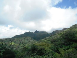The Taino natives imagined El Yunque was a sleeping giant. , Richard W - April 2016