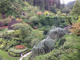 Looking down into the Sunken Garden , David S - August 2014
