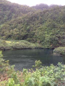 des paysages hors du commun et une flore et une faune exceptionnelles , Ghislaine R - May 2014