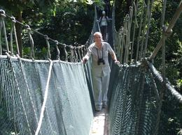 Rainforest canopy walk: The climb was worth it! - July 2011