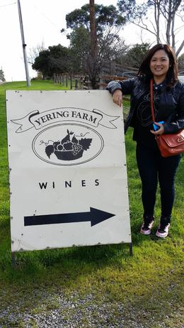 Yering Farm sign , josdp - July 2014
