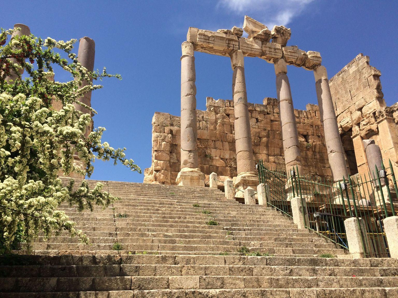 MÁS FOTOS, Escapada de un día a Anjar, Baalbek y Ksara desde Beirut
