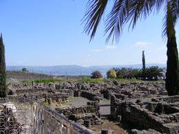 Capernaum - the town of Jesus in Galilee. Wonderful ancient remains, including an early church/synagogue. , Nicholas R - March 2012