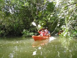 Emerging from one of the tighter mangrove waterways - May 2012