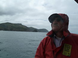 Watching the Albatross over the Great Southern Ocean, , mercedes - March 2011