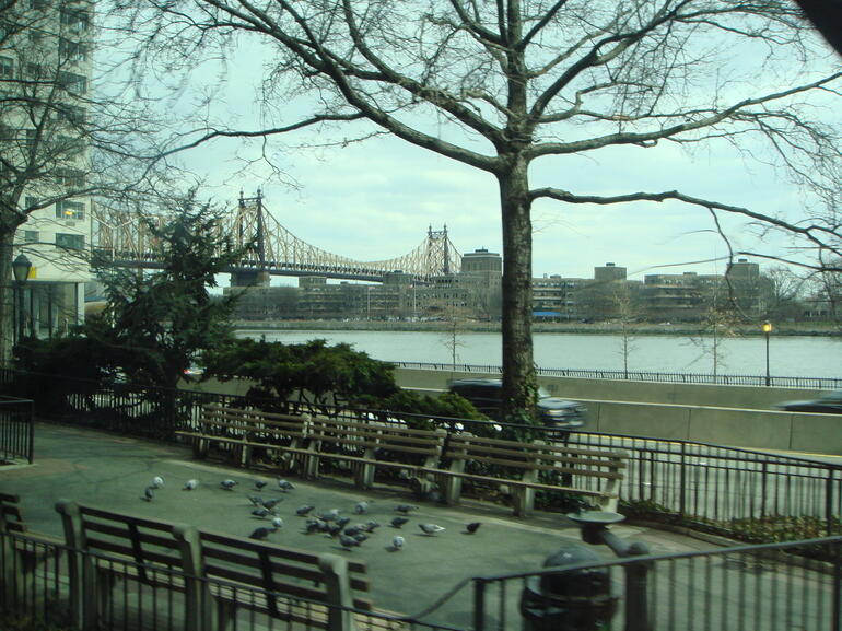ny bridge - New York City