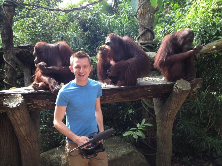 Singapore Zoo Morning Tour with optional Jungle Breakfast amongst Orangutans - Singapore