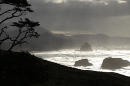 View of Cannon Beach from Ecola State Park. , andyziegler71 - November 2016