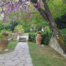 Garden where dinner was provided by a private chef. , Jared W - April 2017