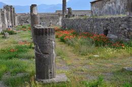 wandering through Pompeii. , Stephen G - July 2017