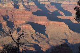 The sharp relief of the canyon is striking in the late afternoon sun., Carl L - October 2010