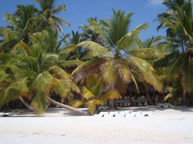 On the Island - Punta Cana